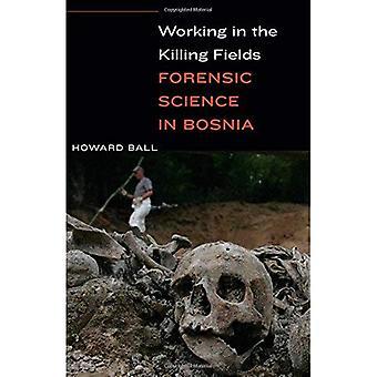 Arbetar i fält: kriminaltekniska i Bosnien