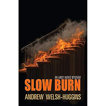 Slow Burn: An Andy Hayes Mystery (Andy Hayes Mysteries)