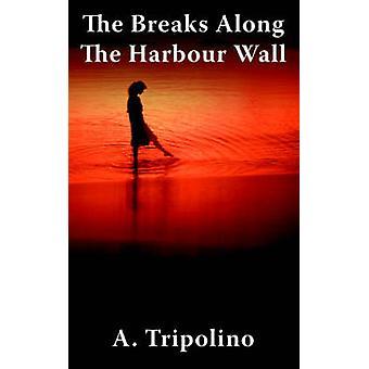 As quebras ao longo da parede do porto por Tripolino & A.