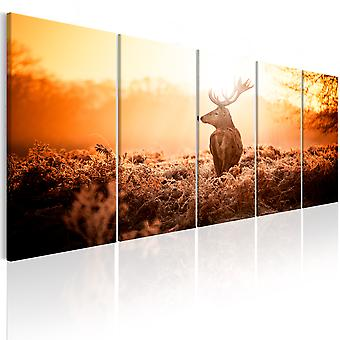 Wandbild - Deer at Sunset