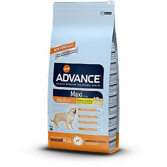 Advance Maxi Adult Chiken and Rice (Dogs , Dog Food , Dry Food)