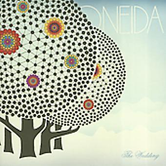 Oneida - bryllup [CD] USA importerer