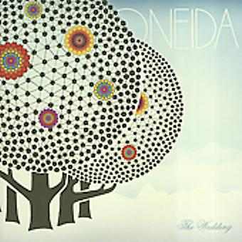 Oneida - Wedding [CD] USA import
