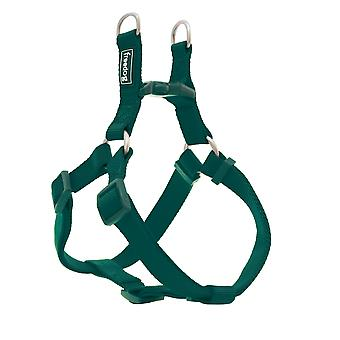 Freedog Arnés Nylon Basic Tipo A Verde (Dogs , Collars, Leads and Harnesses , Harnesses)