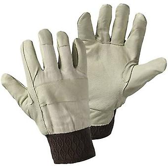 worky 1602 Size (gloves): Women's sizes