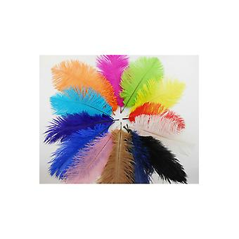 Boa and feathers  Plume/feather ostrich colored 50 cm