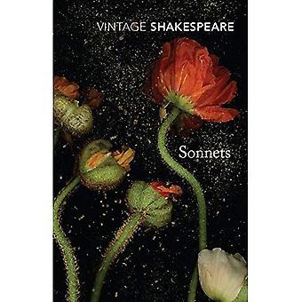 Sonnetten (Vintage Classics)