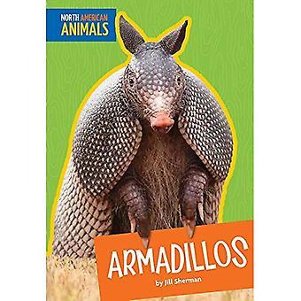 Armadillos (North American Animals)