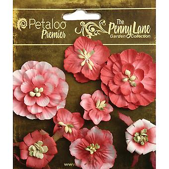 Penny Lane Mixed Blossoms 8 Pkg Antique Red P1836 050