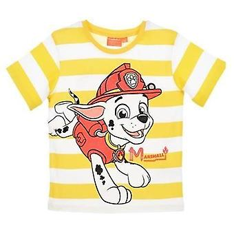 Boys Paw Patrol Short Sleeve T-Shirt / Top