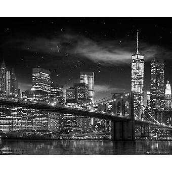 New York Freedom Tower - schwarz / weiß Poster Plakat-Druck