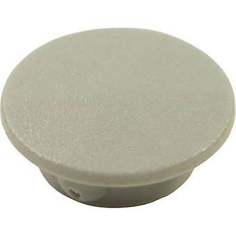 Cover Grey Suitable for K21 rotary knob Cliff CL1736 1 pc(s)