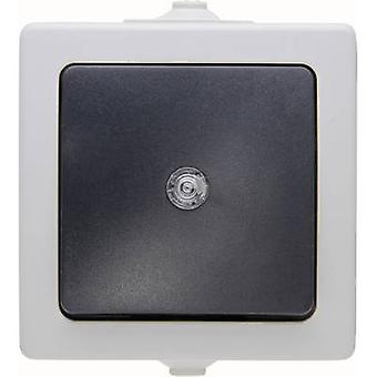 Kopp Switch Nautic Grey 566356003