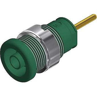 SKS Hirschmann SEB 2630 S1,9 Safety jack socket Socket, vertical vertical Pin diameter: 4 mm Green 1 pc(s)