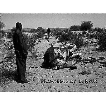 Darfur: Två år i fältet som FN: S fotograf