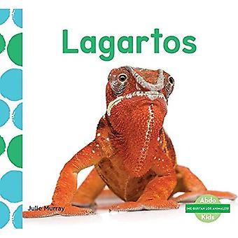 Lagartos (Lizards) (me� Gustan Los Animales! (I Like Animals!))