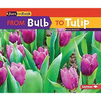 From Bulb to Tulip by Lisa Owings - 9781467761093 Book