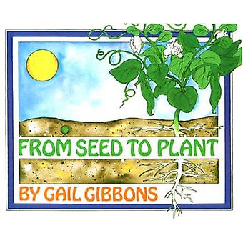 From Seed to Plant by Gail Gibbons - 9780823410255 Book