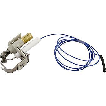 Pentair 471204 природных IID экспериментального замена бассейн или спа нагреватель