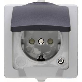 Kopp PG socket (+ lid) Nautic Grey 107856005