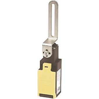 Eaton LSR-S02-1-I/TKG Safety button, Door switch 400 V AC 4 A Steel lever (straight) momentary IP65 1 pack
