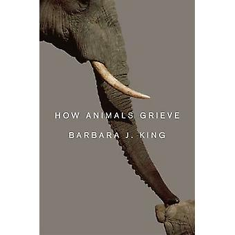 How Animals Grieve by Barbara J. King - 9780226436944 Book