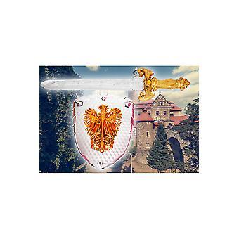 Tilbehør Ridderset zwaard en schild