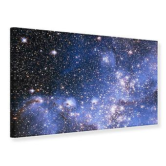 Canvas Print Starry Sky
