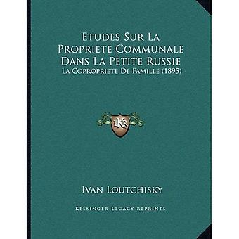 Etudes Sur La Propriete Communale Dans La Petite Russie: La Copropriete de Famille (1895)