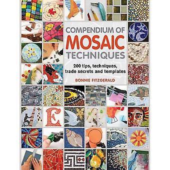 Compendium of Mosaic Techniques: 200 Tips, Techniques, Trade Secrets and Templates