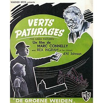 Os verdes pastos Movie Poster (11 x 17)