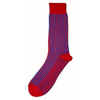 Bassin and Brown Vertical Stripe Midcalf Socks - Royal Blue/Red
