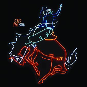 Wayfaring fremmede: Kosmisk amerikansk musik - Wayfaring fremmede: kosmisk amerikansk musik [CD] USA import