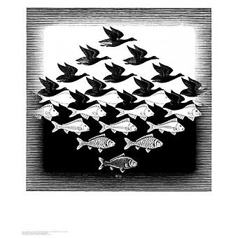 Sky and Water Poster Print by MC Escher (22 x 26)