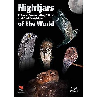 Noitibós do mundo: com Nyctibiidae, Frogmouths, Oilbird e noitibós-corujinha