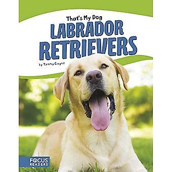 Det är min hund: Labrador Retrievers