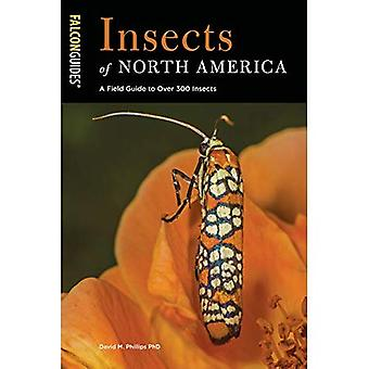 Insects of North America: A Field Guide to Over 300� Insects