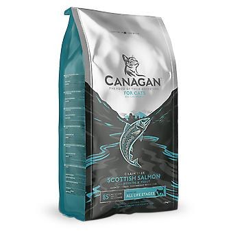 Canagan Scottish Salmon Kibble For Cats - 375g Bag