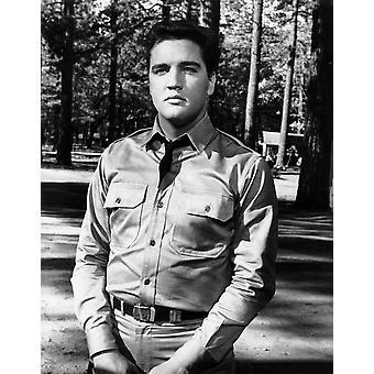 Kid Galahad Elvis Presley 1962 Fotodruck