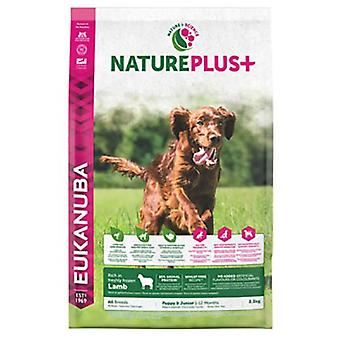 Eukanuba Puppy & Junior Rich in freshly frozen Lamb (Dogs , Dog Food , Dry Food)