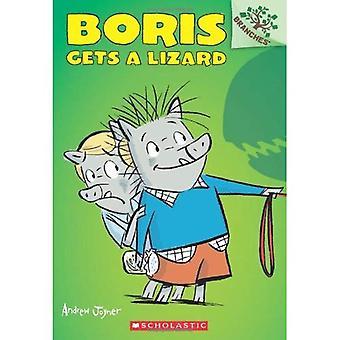 Boris es un lagarto (Boris