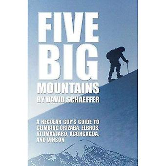 Five Big Mountains: A Regular Guy's Guide to Climbing Orizaba, Elbrus, Kilimanjaro, Aconcagua, and Vinson
