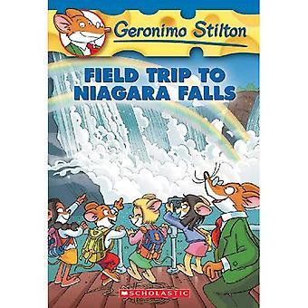 Exkursion zu den Niagarafällen (Geronimo Stilton