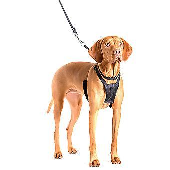 動物非プル ハーネス犬制御の訓練の会社
