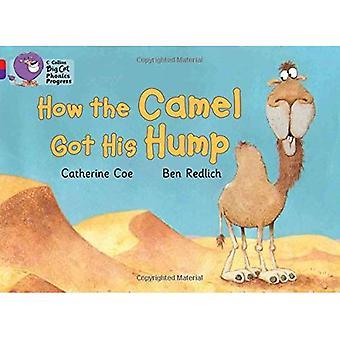 Collins Big Cat Phonics Progress - How the Camel Got His Hump: Band 02A Red A/Band 08 Purple