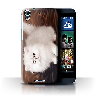 STUFF4 Case/Cover for HTC Desire 626/White & Fluffy/Cute Kittens