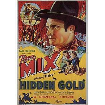 Hidden Gold Movie Poster (11 x 17)