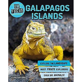 In Focus: Galapagos Islands� (In Focus)