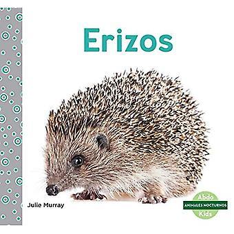 Erizos/ Hedgehog (Animales Nocturnos/ Nocturnal Animals)