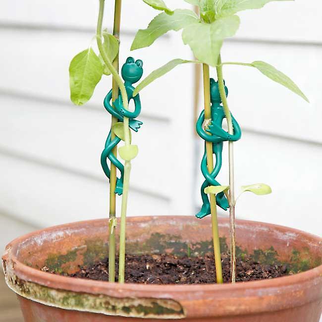 Frog Plant Ties (Pack of 20)